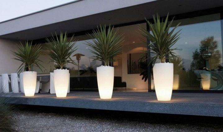 Уличные вазоны для цветов — 50 фото примеров красивых вазонов в ландшафтном дизайне