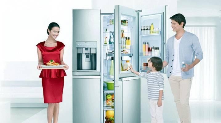 Рейтинг встраиваемых холодильников 2021 года (топ 12)