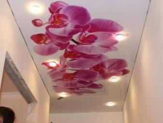 Натяжные потолки с рисунком (69 фото): варианты с узорами в прихожую, красивые примеры с изображением цветов и неба, шелка и черного орнамента
