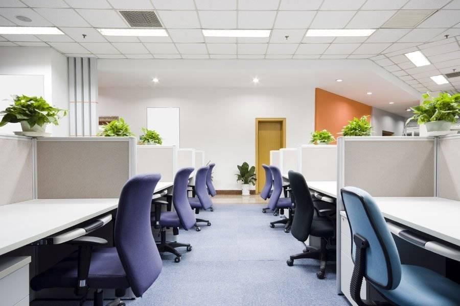 Правила организации офисного пространства: полезные рекомендации для работодателей