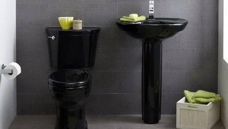 Дизайн туалета маленького размера (17 фото)