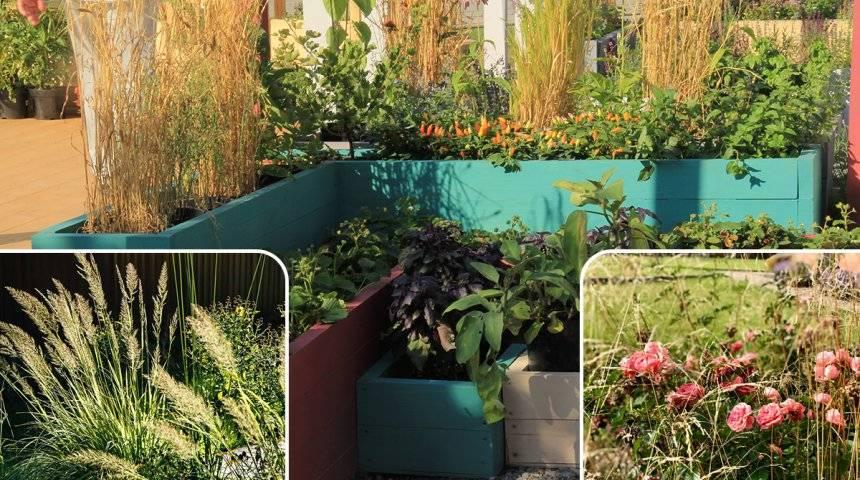 Мой прекрасный сад своими руками, ландшафтные хитрости | построй свой дом!