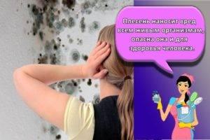 Чем отмыть водоэмульсионную краску: с пола, как снять с потолка, чем отстирать с одежды и оттереть со стены, как удалить с других поверхностей?